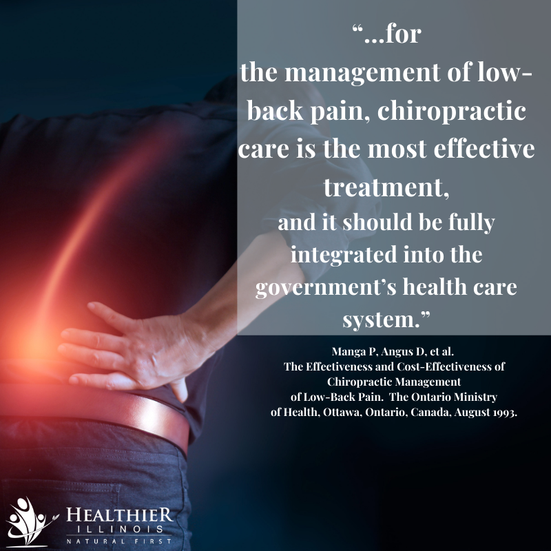 Healthier Illinois Chiropractic Low Back Pain Government Health Care System
