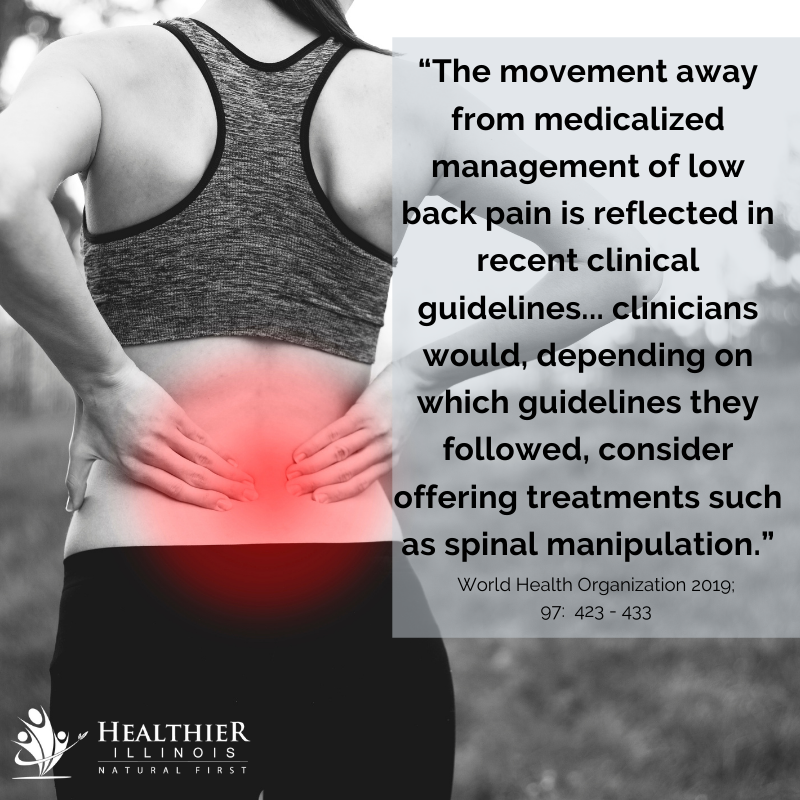 Healthier Illinois Movement Away Medicalized Management Low Back Pain Spinal Manipulation